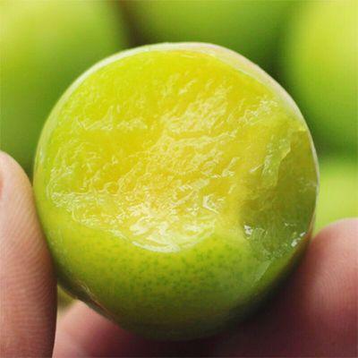 应季水果三月李子新鲜现货脆李三华李青李孕妇酸整箱批发现摘发货