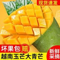 【买1送1】水果芒果越南玉芒大青芒芒果批发1-10斤装当季水果芒果