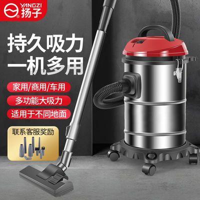 扬子吸尘器家用小型除螨大吸力超强力大功率静音车用干湿两用工业