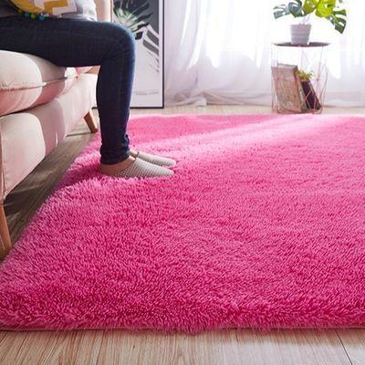长毛绒家用地毯床边毯垫卧室地毯客厅毯茶几地毯个性网红地毯地垫