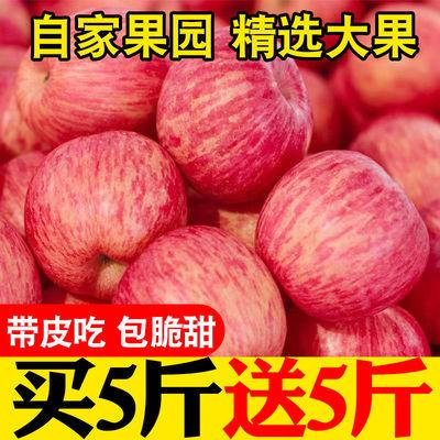 【一级精品红富士】陕西苹果冰糖心新鲜水果整箱5/10斤不打蜡包邮