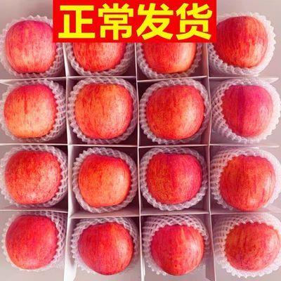 现货速发苹果当季新鲜水果红富士脆甜苹果5斤10斤非阿克苏冰糖心