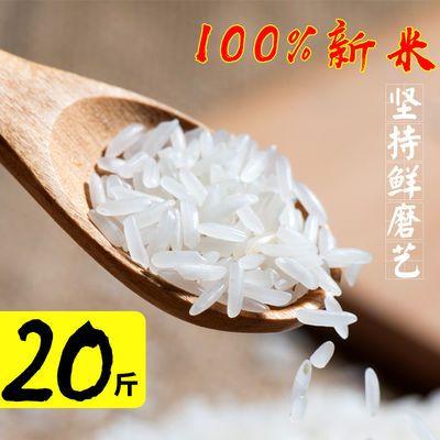 当季软香新米优质农家自产大米10kg/20斤长粒香贡米不抛光丝苗米