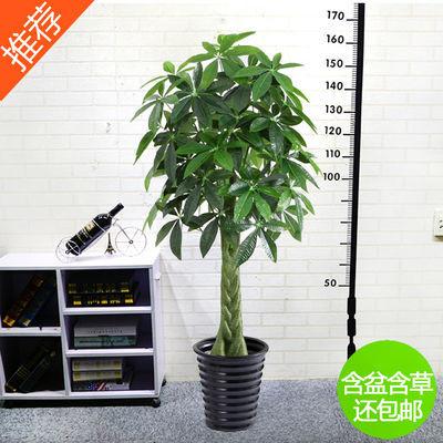 新款仿真树发财树 假树假花客厅装饰绿色绿植物落地绢花盆栽塑料
