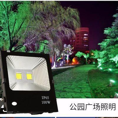 led彩色射灯投光灯户外防水景观绿化射树灯园林照树灯庭院草坪灯
