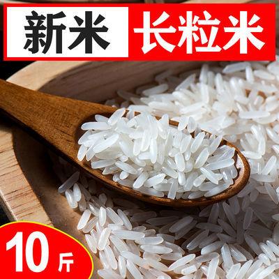 煲仔饭专用丝苗米 新大米10斤 油粘米长粒香大米10斤特价批发5KG