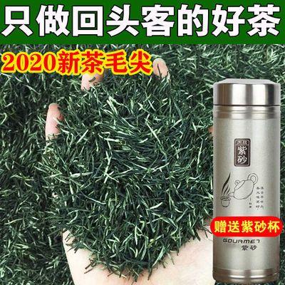 毛尖2020新茶信阳春茶绿茶茶叶毛尖茶手工明前云雾嫩芽125g-500g