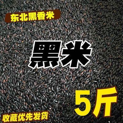 5斤19年新东北黑米长粒香五谷杂粮米粥紫米散装农家自产大米10斤