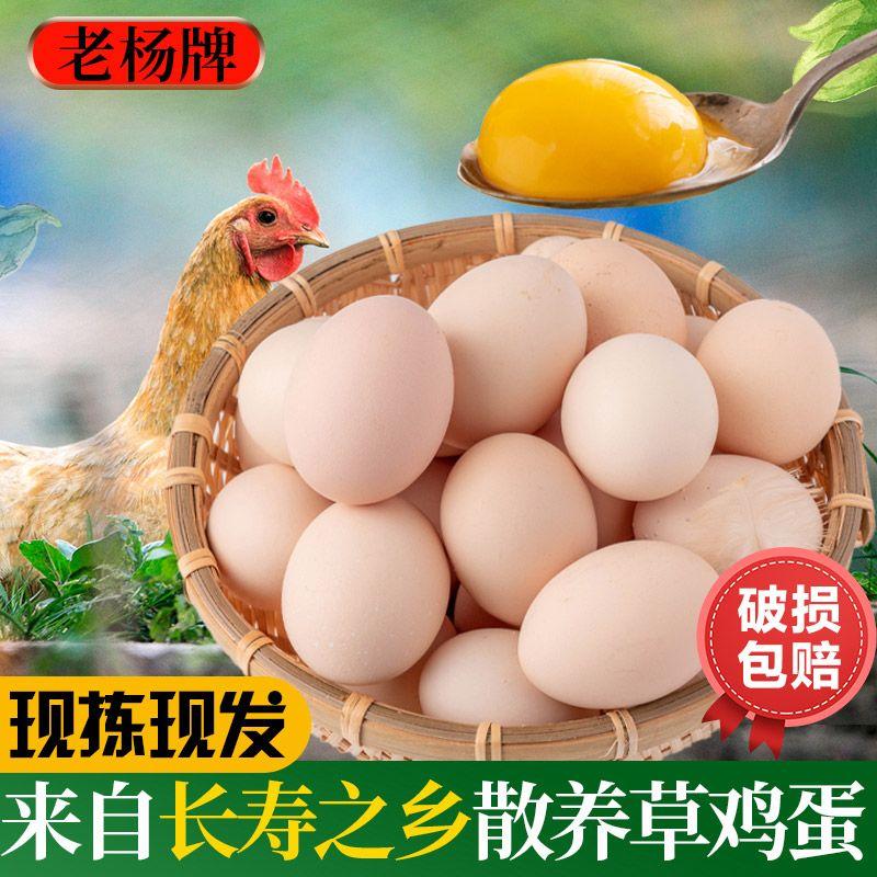 正宗土鸡蛋农家散养草鸡蛋新鲜初生蛋初产蛋批发整箱20枚现捡现发