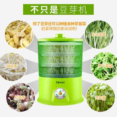 爆款康丽家用智能豆芽机双层三层全自动大容量发黄豆芽罐绿豆芽发