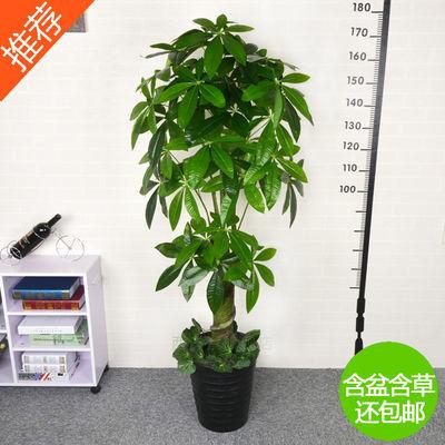 爆款仿真树发财树 假树假花客厅装饰绿色绿植物落地绢花盆栽塑料