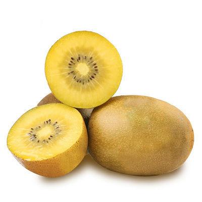 西峡黄心猕猴桃新鲜应季时令水果金果奇异果弥猴桃泥猴桃非红心果