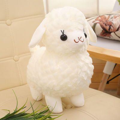 2020新品特卖可爱纯白色小绵羊毛绒玩具公仔儿童玩偶布娃娃超级萌