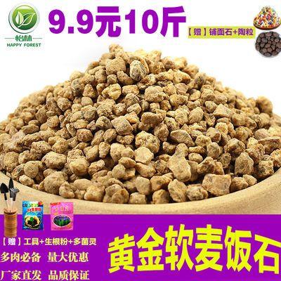 怡林黄金软麦饭石颗粒土营养土多肉植物铺面石拌土专用多肉土陶粒