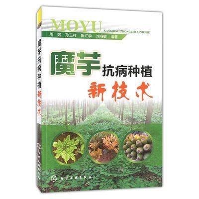 魔芋抗病种植新技术书 高产魔芋种植技术书籍 蘑芋种教材书籍 魔