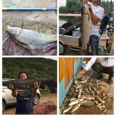钓鱼竿手竿渔具套装组合全套垂钓用品鱼杆手杆新手鱼具钓具