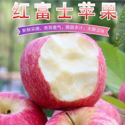 【特价2000件】精品水果脆甜红富士苹果10斤3斤5斤装包邮