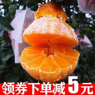 眉山不知火丑橘丑柑桔子柑橘5/10斤装单果(65mm-120mm)丑八怪
