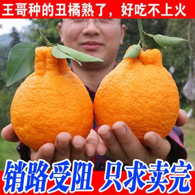 四川新鲜丑橘不知火丑八怪孕妇水果当季橘子丑桔丑柑批发多规格