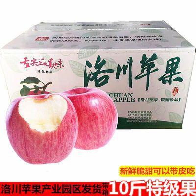洛川苹果水果正宗陕西水晶红富士苹果新鲜脆甜多汁精品大果10斤装