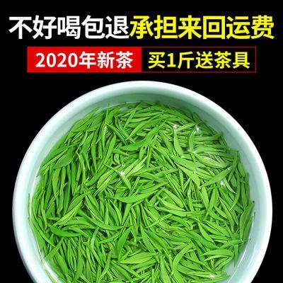 【买1斤送茶具】2020新茶信阳毛尖茶叶绿茶浓香耐泡型250克袋装