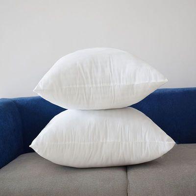 【多规格可选】靠垫芯/抱枕芯/方垫芯/十字绣芯/方枕芯/靠枕芯