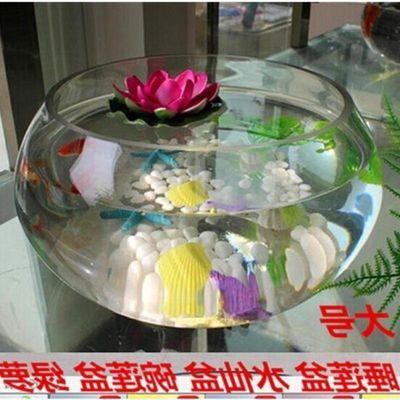 。。我想买水培玻璃花瓶透明大号水仙盆碗莲盆睡莲花盆乌龟鱼缸水