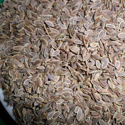 千里香100/500g 籽粒粉莳萝十里香七里香万里香花椒调味香料调料