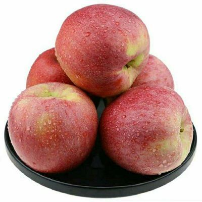 【粉面甜】陕西秦冠苹果10斤装水果新鲜粉糯甜可刮泥儿童宝宝辅食