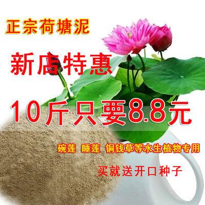 睡莲等水生植物专用塘泥土淤泥10斤特惠装包邮营养土荷塘泥碗莲