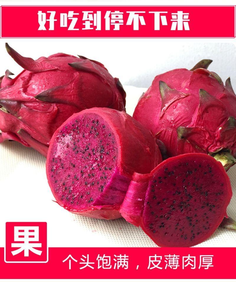 精选金都一号红心火龙果2-5斤净重热带新鲜水果时令孕妇整箱包邮x