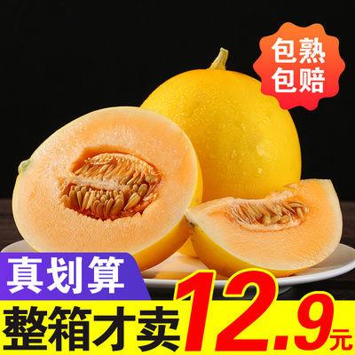 陕西黄金蜜瓜10斤新鲜水果批发黄河蜜瓜阎良甜瓜香瓜哈密瓜2/5斤