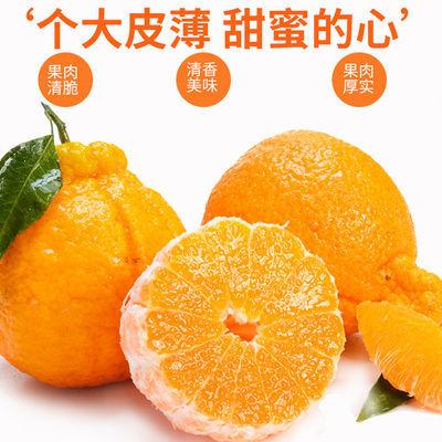【鲜果直发】四川丑橘不知火丑八怪橘子当即新鲜孕妇水果2/5/10斤