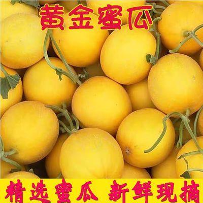 https://t00img.yangkeduo.com/goods/images/2020-04-19/615277f52e6d732433f70856557a32c3.jpeg