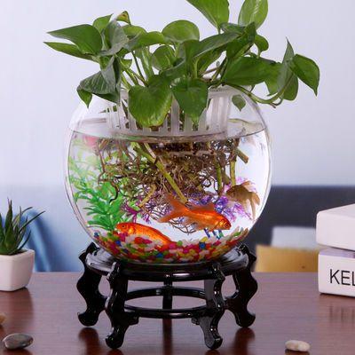 客厅创意小型鱼缸迷你乌龟缸玻璃鱼缸圆形家用金鱼缸办公桌面摆件