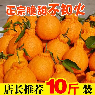 四川不知火丑橘丑柑丑桔丑八怪橘子桔子新鲜水果2/5/10斤整箱现摘