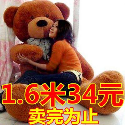 泰迪熊猫公仔大抱抱熊女孩布娃娃玩偶毛绒玩具送女友熊熊生日礼物