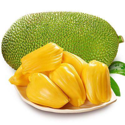 高档海南现摘 新鲜树菠萝蜜1个整装 当季水果 果肉饱满 热带水果
