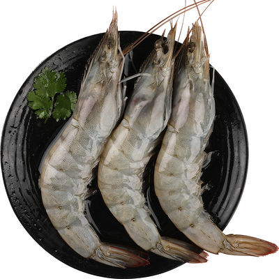 【顺丰速递】野生海捕大虾青虾白虾海鲜冻虾基围虾大虾对虾明虾