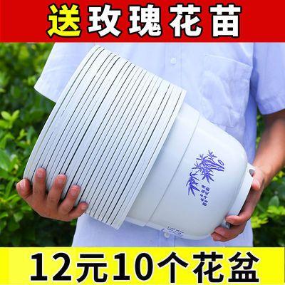 抖音同款塑料花盆绿萝大号特价清仓多肉加厚防陶瓷树脂月季花种树