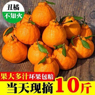 四川丑橘不知火丑八怪新鲜水果丑橘5/1/3斤丑桔10斤装