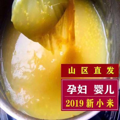 【合德谷】山西沁州黄小米粥优质杂粮小黄米新米特价月子米5斤2斤