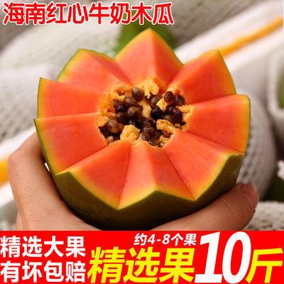 76376/现摘海南红心木瓜时令新鲜水果青木瓜当季牛奶木瓜非雷州冰糖木瓜