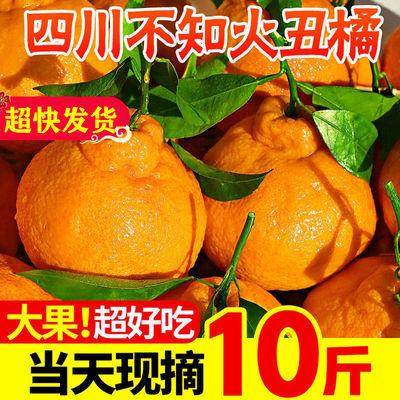 【精选】四川丑橘不知火丑柑丑八怪橘子水果批发新鲜水果桔子柑橘
