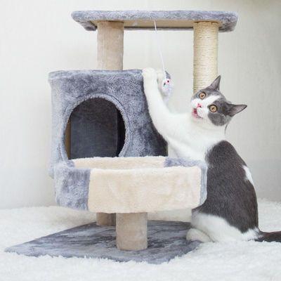 热卖猫架猫爬架猫窝猫树一体猫抓柱小型爬猫架带窝别墅猫架子猫咪