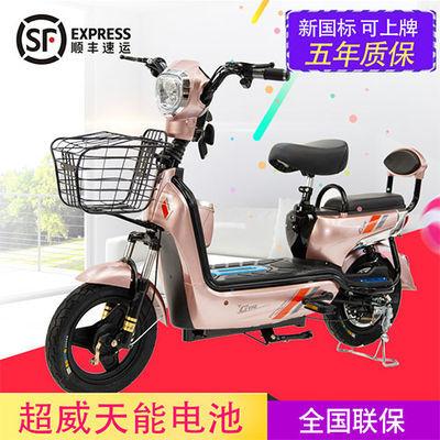 新款成人电动车48V男女双人电动自行车脚踏迷你电瓶车包邮锂电池