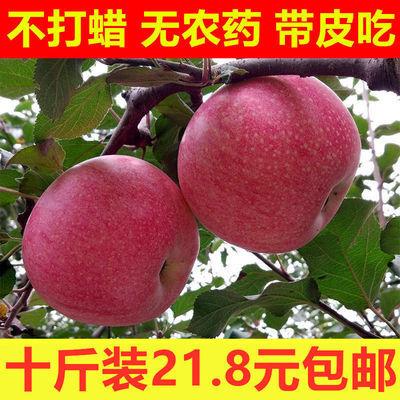 超甜陕西高山秦冠苹果冰糖心宝宝老人粉苹果老树红苹果非红富士