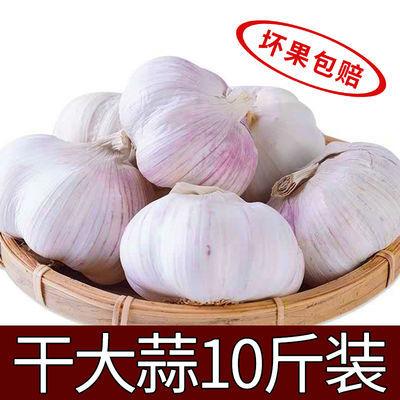 新晒干蒜【坏果包赔】2/5/10斤装干蒜大蒜头紫白皮蒜新鲜蔬菜批发