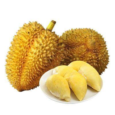 泰国金枕头榴莲新鲜热带水果特价批发现货包邮进口猫山王巴掌榴莲