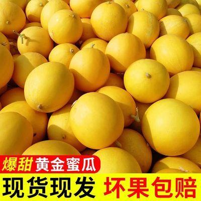 陕西阎良甜瓜黄金皮蜜瓜当季新鲜水果香瓜哈密瓜脆瓜黄河蜜5-10斤